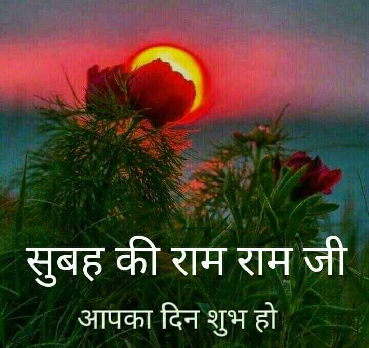 🌄  सुप्रभात - सुबह की राम राम जी आपका दिन शुभ हो - ShareChat