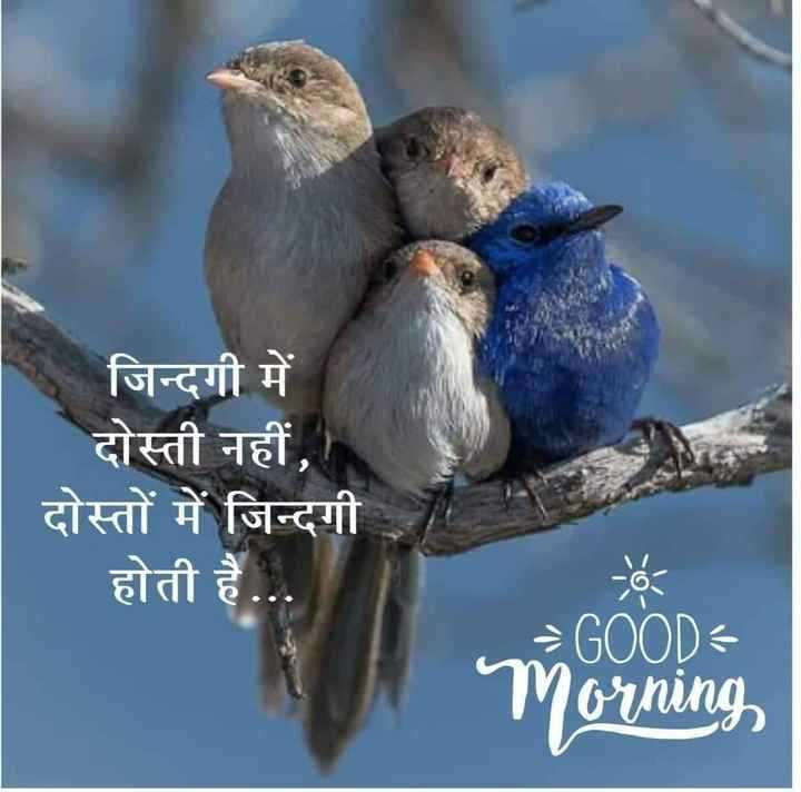 🌞 सुप्रभात 🌞 - S जिन्दगी में दोस्ती नहीं , दोस्तों में जिन्दगी होती है . . . = GOOD Morning - ShareChat