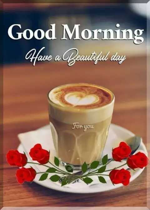 🌄सुप्रभात - Good Morning Have a Beautiful day For you - ShareChat
