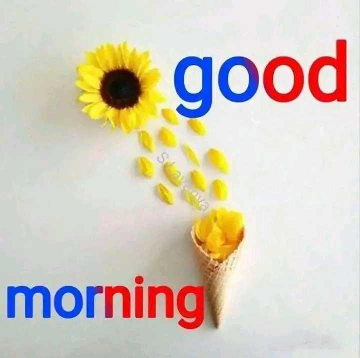 🌄सुप्रभात - • good morning - ShareChat