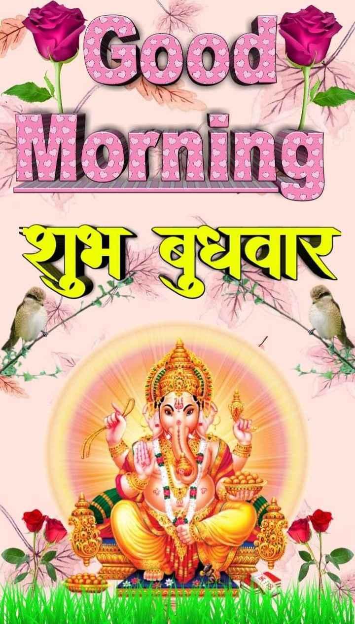 🌞 सुप्रभात 🌞 - Good Morning शुभ बुधवार - ShareChat