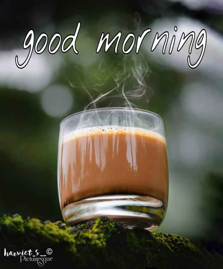🌄सुप्रभात - good morning harviet _ & _ _ © Picturesque - ShareChat