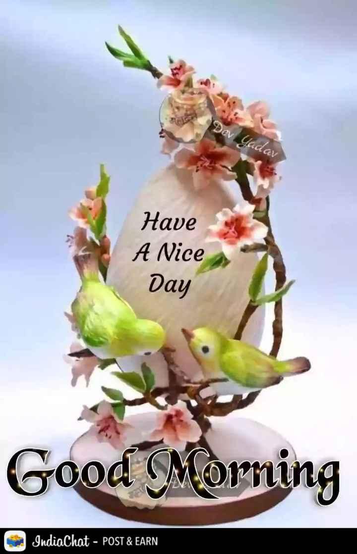 🌄  सुप्रभात - Dev Uadav Have A Nice Day Good Morning IndiaChat - POST & EARN - ShareChat
