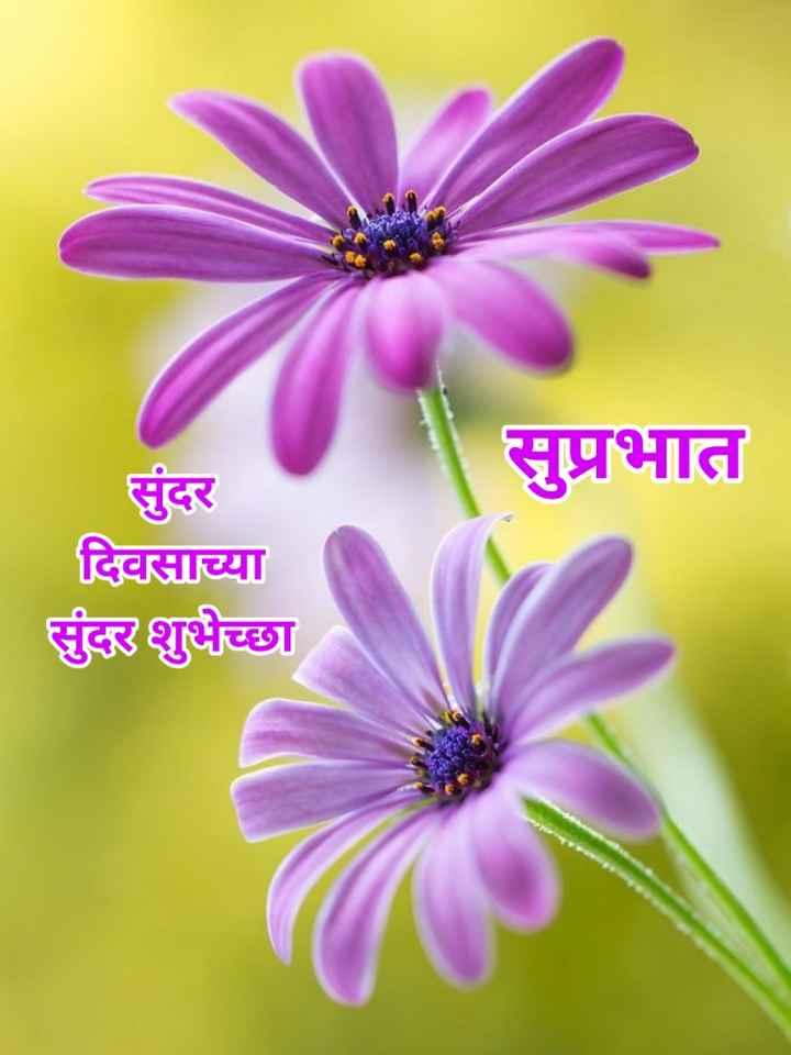 🌄सुप्रभात - सुप्रभात सुंदर दिवसाच्या सुंदर शुभेच्छा - ShareChat