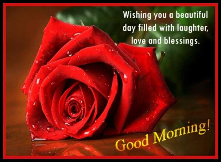 🌄सुप्रभात - Wishing you a beautiful day filled with laughter , love and blessings . Good Morning ! - ShareChat