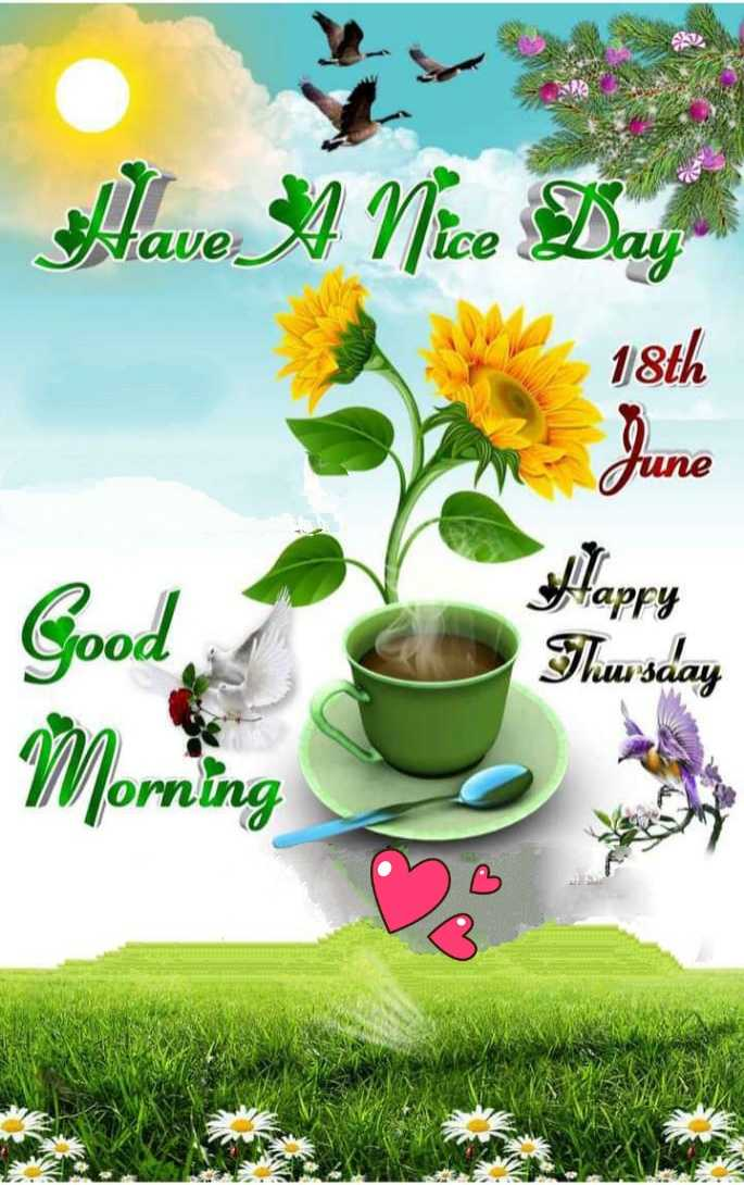 🌄सुप्रभात - Have A Nice Day De 18th June аргу Good Tursday Morning - ShareChat
