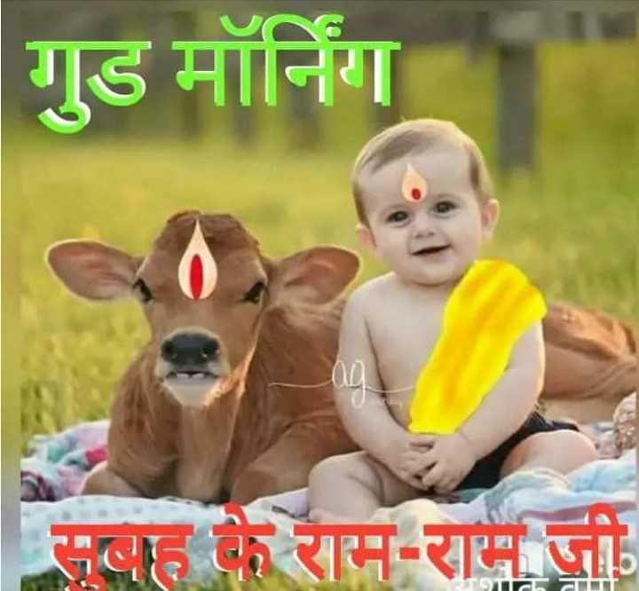 🌄  सुप्रभात - गुड मॉर्निंग सबह के राम - राम जी - ShareChat