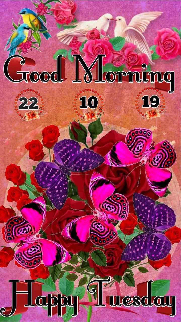 🌞 सुप्रभात 🌞 - Good Morning 22 10 19 09000 BIO labby Tuesday - ShareChat