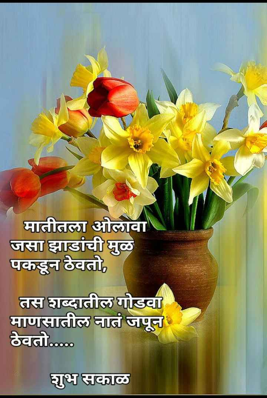 🌄सुप्रभात - मातीतला ओलावा जसा झाडांची मुळ पकडून ठेवतो , तस शब्दातील गोडवा माणसातील नातं जपून ठेवतो . . . . . शुभ सकाळ - ShareChat