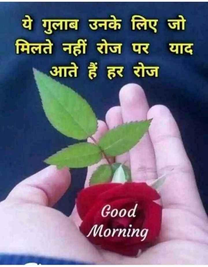 🌞सुप्रभात🌞 - ये गुलाब उनके लिए जो मिलते नहीं रोज पर याद आते हैं हर रोज Good Morning - ShareChat