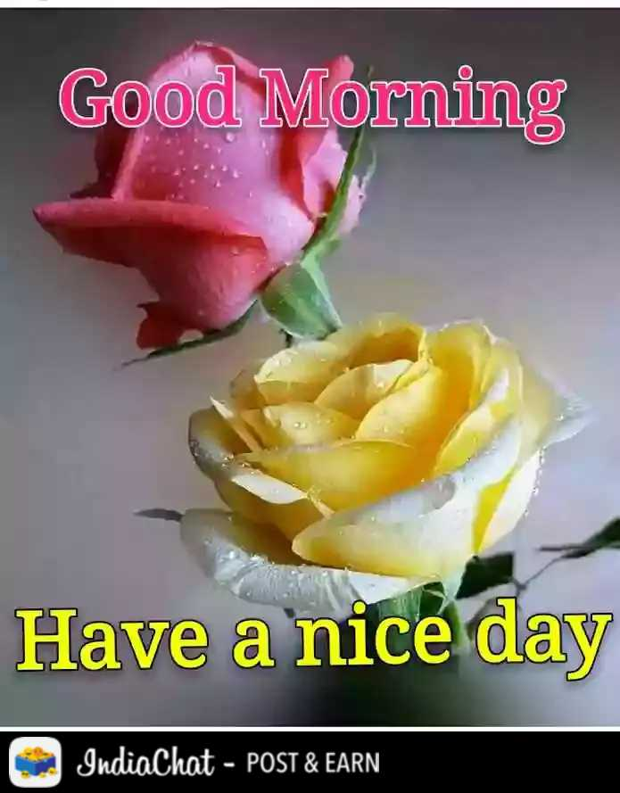 🌄  सुप्रभात - Good Morning Have a nice day IndiaChat - POST & EARN - ShareChat