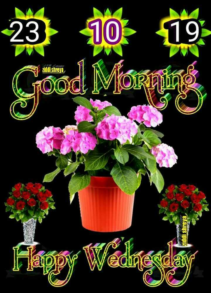 🌞 सुप्रभात 🌞 - 聽 Good Morning ziddi shreya ziddi shreya - ShareChat