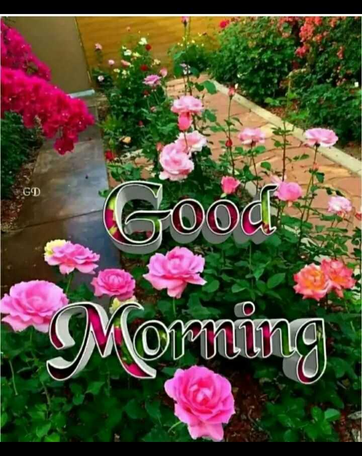 🌄सुप्रभात - GD Good Morning - ShareChat