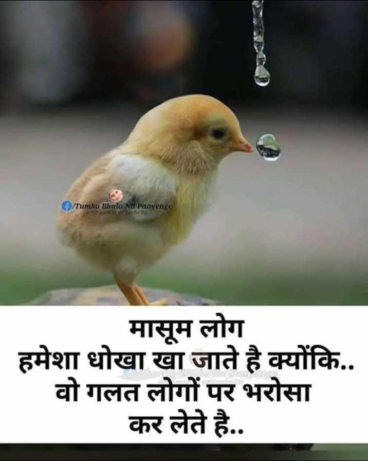 🎙 स्वरचित साहित्य - Tumko Bhula Na Paayenge मासूम लोग हमेशा धोखा खा जाते है क्योंकि . . वो गलत लोगों पर भरोसा कर लेते है . . - ShareChat