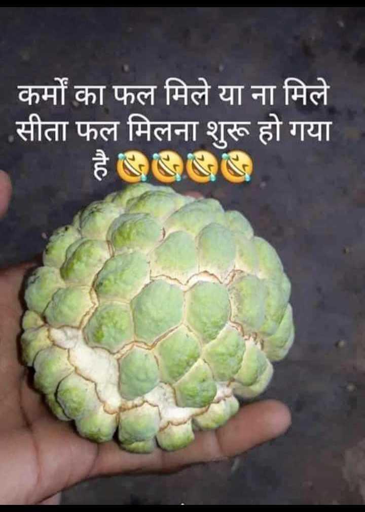 😄 हँसिये और हँसाइये 😃 - कर्मों का फल मिले या ना मिले सीता फल मिलना शुरू हो गया - ShareChat