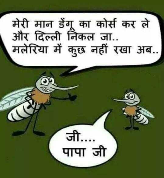 हंसना मना है😀 - मेरी मान डेंगू का कोर्स कर ले और दिल्ली निकल जा . . मलेरिया में कुछ नहीं रखा अब . . जी . . पापा जी - ShareChat