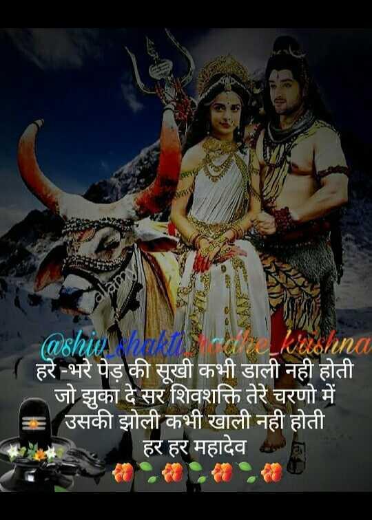 🔱हर हर महादेव - @ shiv a ra karna हरे - भरे पेड़ की सूखी कभी डाली नही होती जो झुका दे सर शिवशक्ति तेरे चरणो में उसकी झोली कभी खाली नही होती हर हर महादेव anda - ShareChat