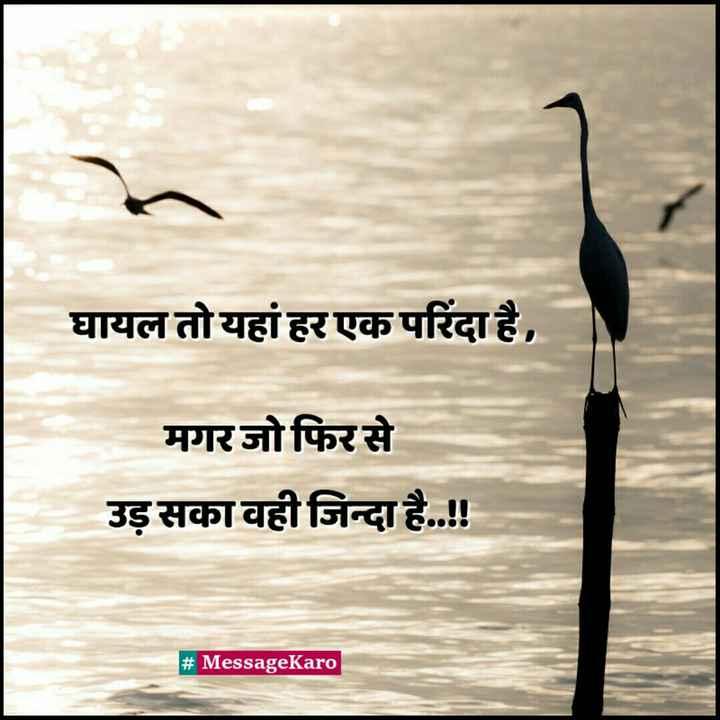 📓 हिंदी साहित्य - घायल तो यहां हर एक परिंदा है , मगर जो फिर से उड़ सका वही जिन्दा है . . ! ! # MessageKaro - ShareChat
