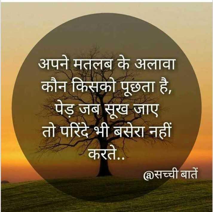 📓 हिंदी साहित्य - अपने मतलब के अलावा कौन किसको पूछता है , पेड़ जब सूख जाए । तो परिंदे भी बसेरा नहीं करते . . सच्ची बातें - ShareChat