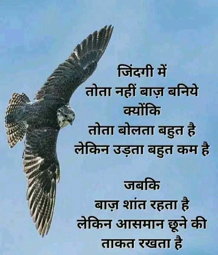 📓 हिंदी साहित्य - जिंदगी में तोता नहीं बाज़ बनिये क्योंकि तोता बोलता बहुत है । लेकिन उड़ता बहुत कम है । जबकि बाज़ शांत रहता है । लेकिन आसमान छूने की ताकत रखता है । - ShareChat