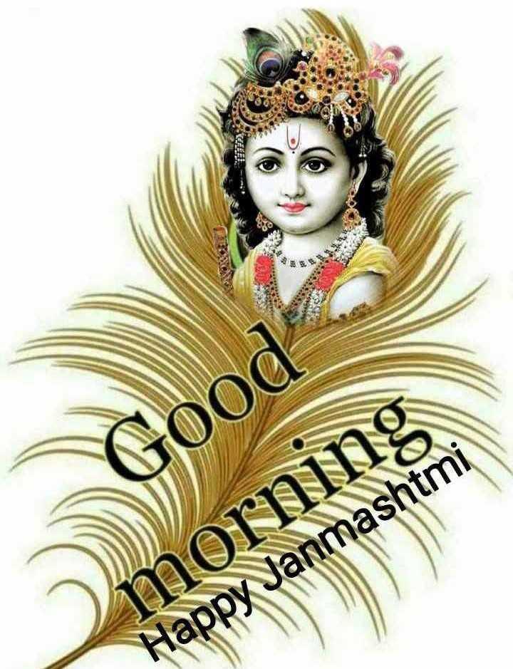 💐हैप्पी जन्माष्टमी - Good morning Happy Janmashtmi - ShareChat