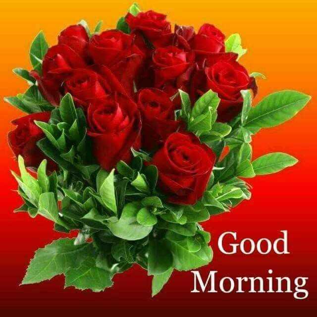 🎂 हैप्पी बर्थडे नीतू सिंह - Good Morning - ShareChat