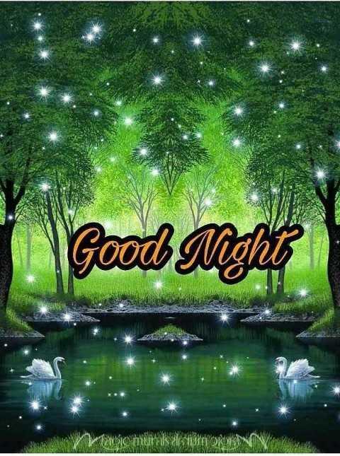 🎂 हैप्पी बर्थडे श्रिया सरन - Good Night - ShareChat