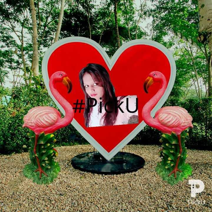 🎂 हैप्पी बर्थडे सलमान खान - # PI KU - ShareChat