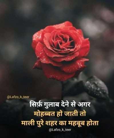 🌹 हैप्पी रोज़ डे 🌹 - @ Lafzo _ k . teer सिर्फ़ गुलाब देने से अगर मोहब्बत हो जाती तो माली पुरे शहर का महबूब होता @ Lafzo _ k _ teer - ShareChat