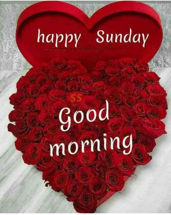 हैप्पी सन्डे - happy Sunday i Nishad Good morning - ShareChat