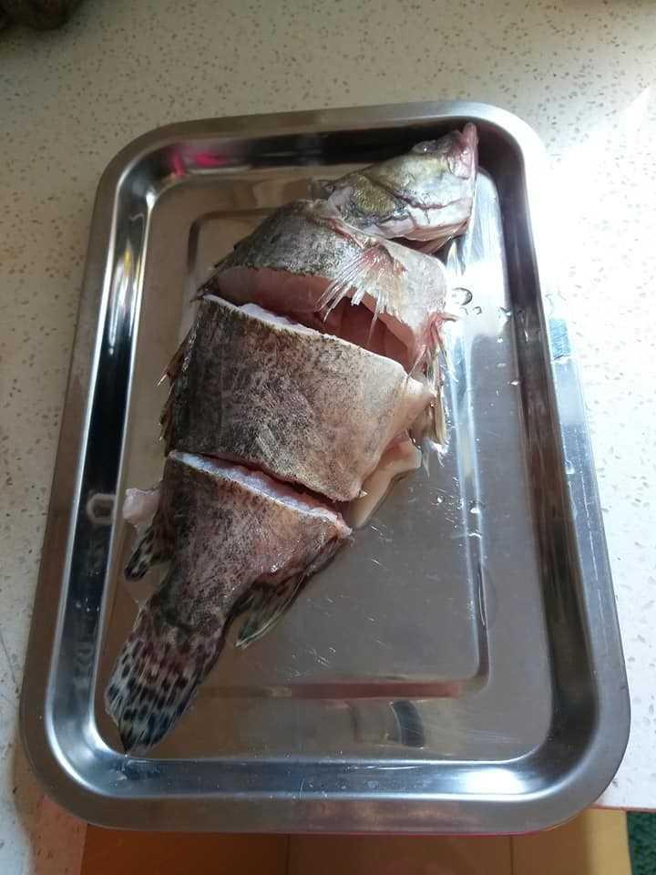অসাধারণ মাছ 🐠 - ShareChat