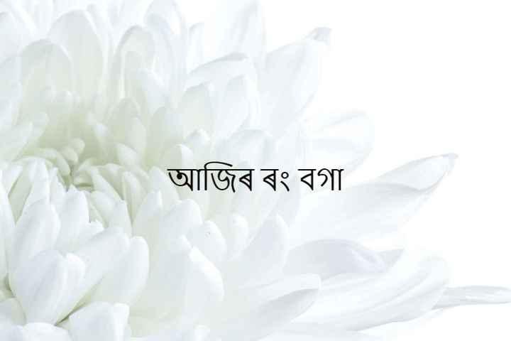 আজিৰ ৰং - আজিৰ ৰং বগা - ShareChat