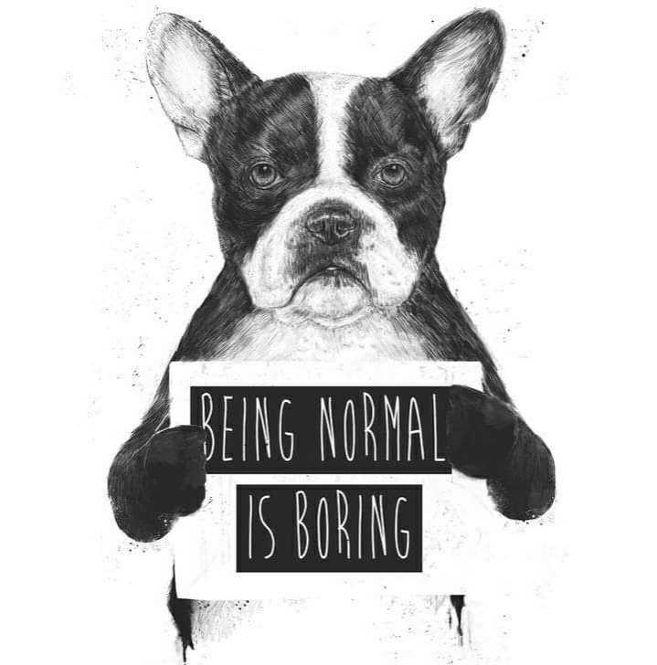 আমার চিন্তাভাবনা - BEING NORMAL IS BORING - ShareChat