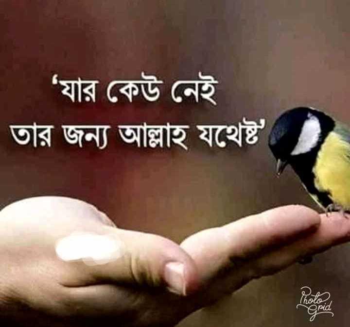 🕌ইবাদাত - ' যার কেউ নেই তার জন্য আল্লাহ যথেষ্ট - ShareChat
