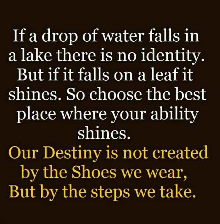 📚উপদেশ - If a drop of water falls in a lake there is no identity . But if it falls on a leaf it shines . So choose the best place where your ability shines . Our Destiny is not created by the Shoes we wear , But by the steps we take . - ShareChat