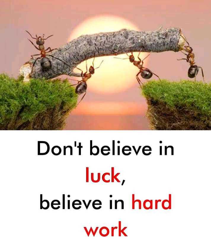 📚উপদেশ - Don ' t believe in luck , believe in hard work - ShareChat