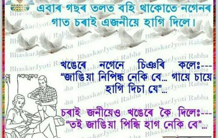 """🤣 কৌতুক - I TURE এবাৰ গছৰ তলত বহি থাকোতে নগেনৰ । গাত চৰাই এজনীয়ে হাগি দিলে । Bhaskar Sat : l / ja 18 / audio Bhaskaryotes Rabha BhaskarJyoti Rab Ivoti Rabha   aashkarJyoti Rখঙেৰে । নগেনে চিঞৰি কলেঃ - - - """" জাঙিয়া নিপিন্ধ নেকি বে . . গায়ে চায়ে Fw8 uru1 tha Bhaskar tisti Ivoti Rab JarJyoti Rabha fং চৰাইজনীয়েও খঙেৰে কৈ দিলেঃ - - - """" তই জাঙিয়া পিন্ধি হাগ নেকি বে """" . . - ShareChat"""