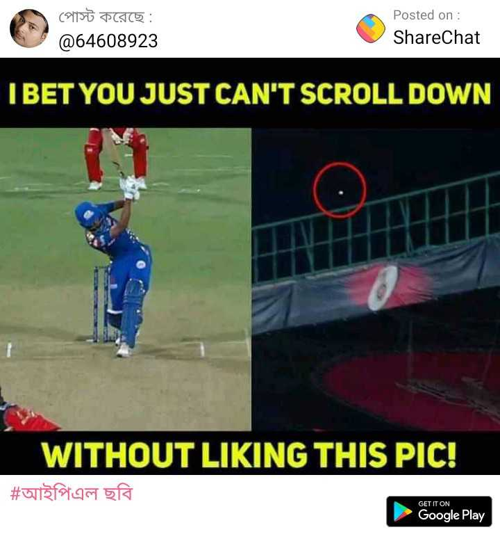 🏏 ক্রিকেট - পােস্ট করেছে : @ 64608923 Posted on : ShareChat I BET YOU JUST CAN ' T SCROLL DOWN WITHOUT LIKING THIS PIC ! | # আইপিএল ছবি GET IT ON Google Play - ShareChat
