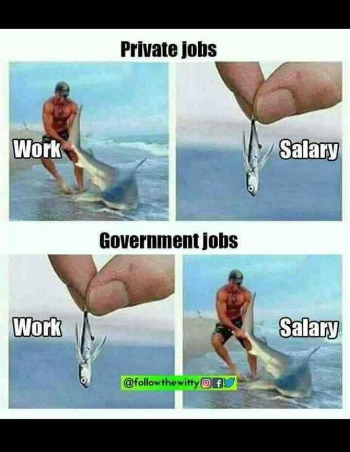 খবর 🗞 - Private jobs Work Salary Government jobs Work Salary @ follow the witty Of - ShareChat