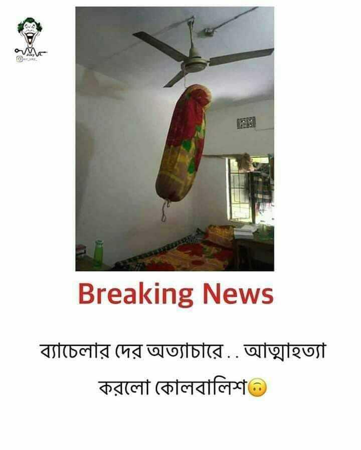 গুরুত্বপূর্ণ খবর - তি Breaking News ব্যাচেলার দের অত্যাচারে . . আত্মহত্যা করলাে কোলবালিশ ) - ShareChat