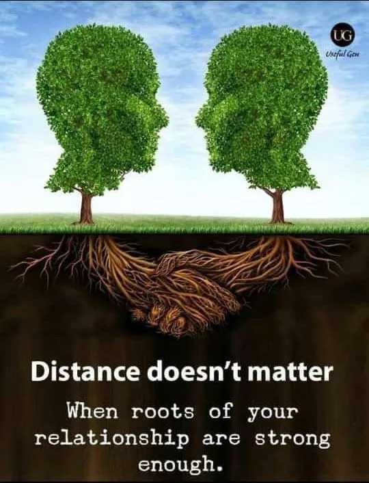 🌾চাষ_বাস - Useful Go Distance doesn ' t matter When roots of your relationship are strong enough . - ShareChat