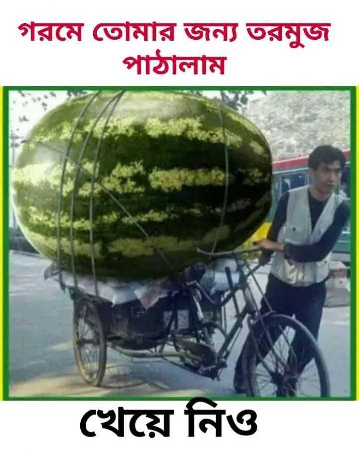 🌾চাষ_বাস - গরমে তােমার জন্য তরমুজ পাঠালাম । খেয়ে নিও - ShareChat