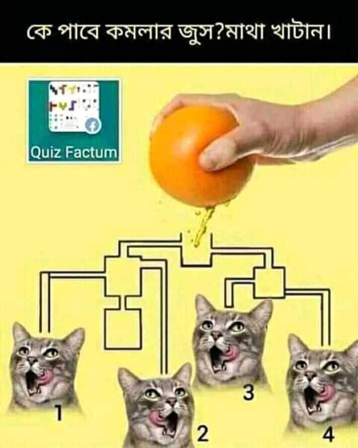 📰জেনারেল নলেজ - কে পাবে কমলার জুস ? মাথা খাটান । Quiz Factum - ShareChat