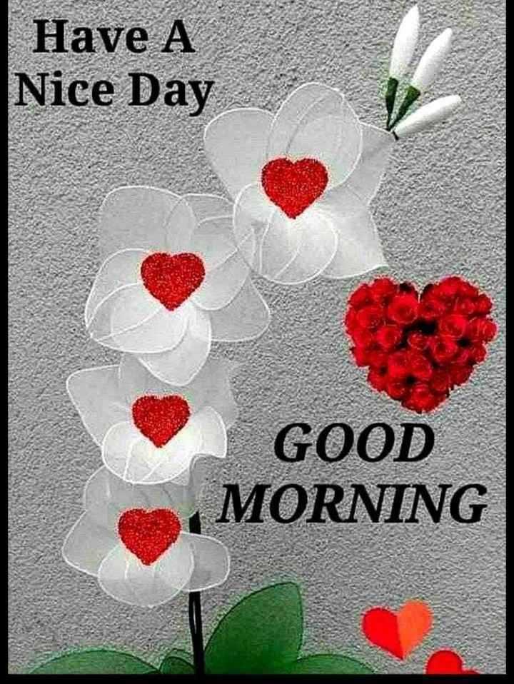 ☀ ঠাণ্ডাৰ ৰাতিপুৱা - Have A Nice Day GOOD MORNING - ShareChat