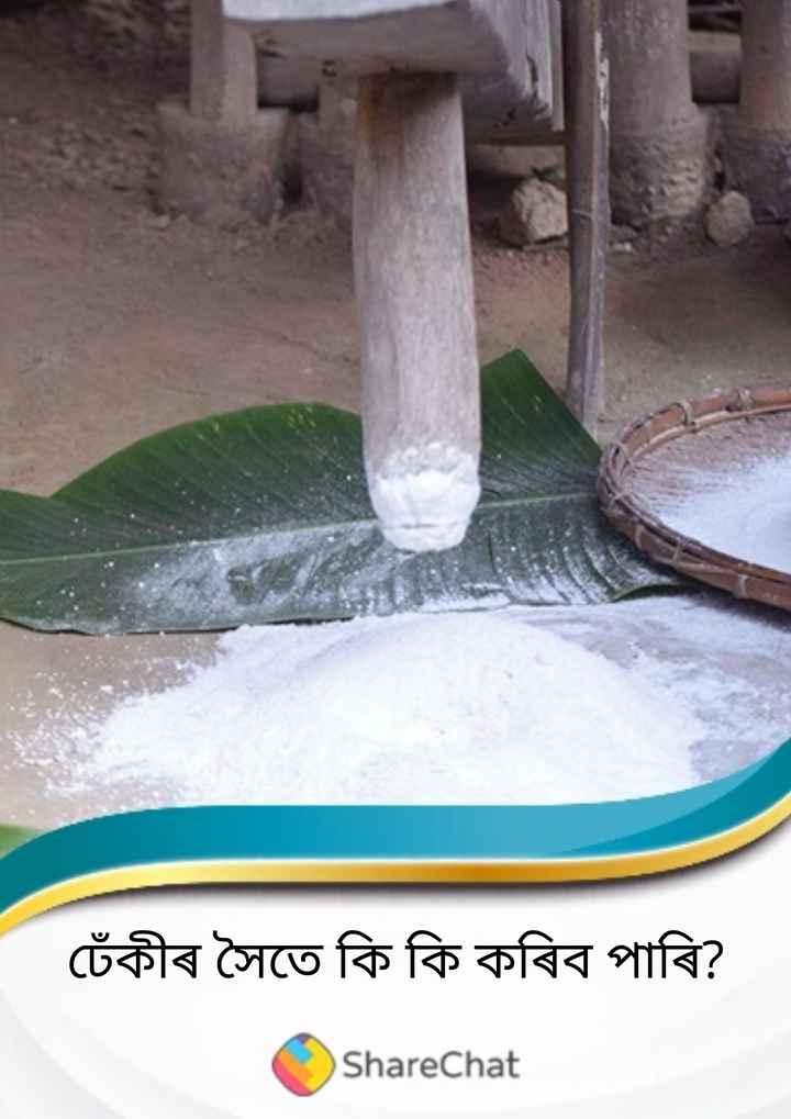 ঢেঁকী আৰু ভোগালী বিহু - চেঁকীৰ সৈতে কি কি কৰিব পাৰি ? ShareChat - ShareChat