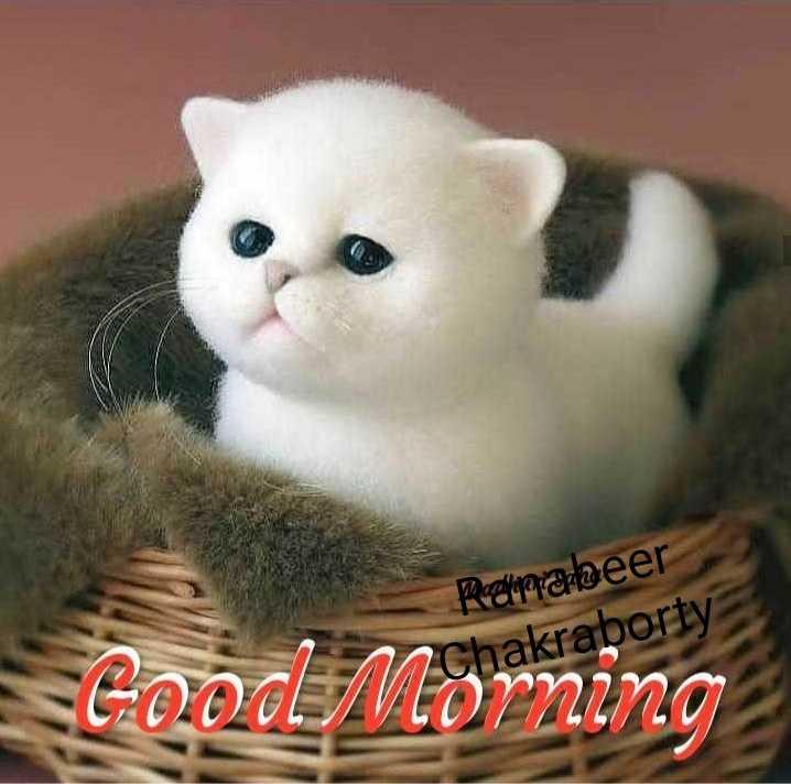 দূর্গা পুজো প্রস্তুতি 🙏 - Prepraleer Chakraborty GOOOL Morning - ShareChat