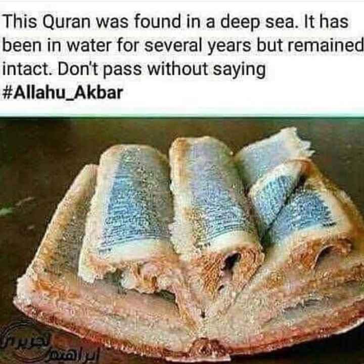 পাঁচ ওয়াক্ত নামাজ - This Quran was found in a deep sea . It has been in water for several years but remained intact . Don ' t pass without saying # Allahu Akbar - ShareChat
