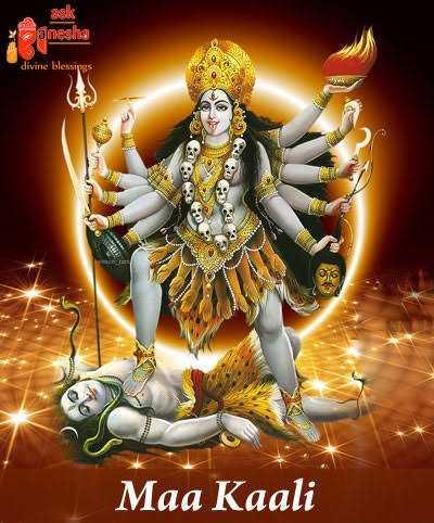 পাকিস্তান vs অস্ট্রেলিয়া  🏏 - ask anesha divine blessings Maa Kaali - ShareChat