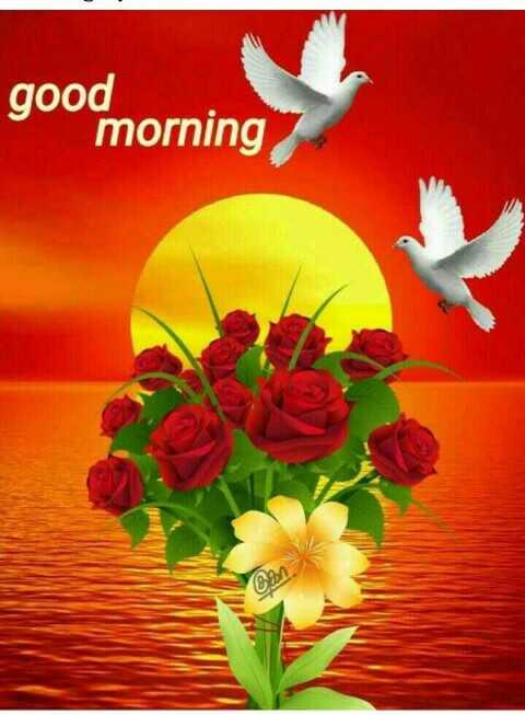 প্রথম প্রেম - good morning - ShareChat