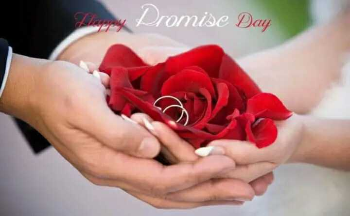 🤝প্ৰোমিছ ডে - Dromise Day - ShareChat